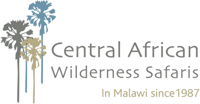 Central African Wilderness Safari